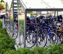 Uppsala Science Park Hubben med EDGE cykeltak och EDGETYRE cykelställ.